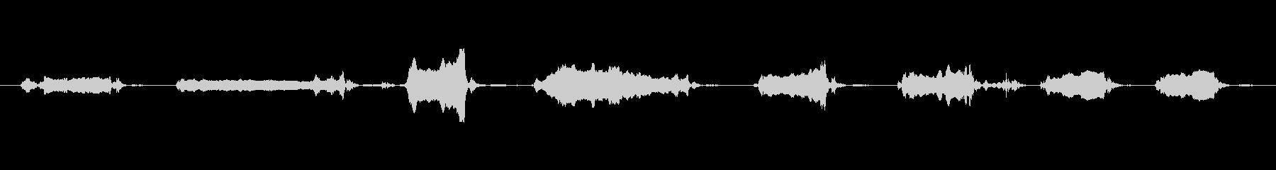 犬 GSP ワインロング04の未再生の波形