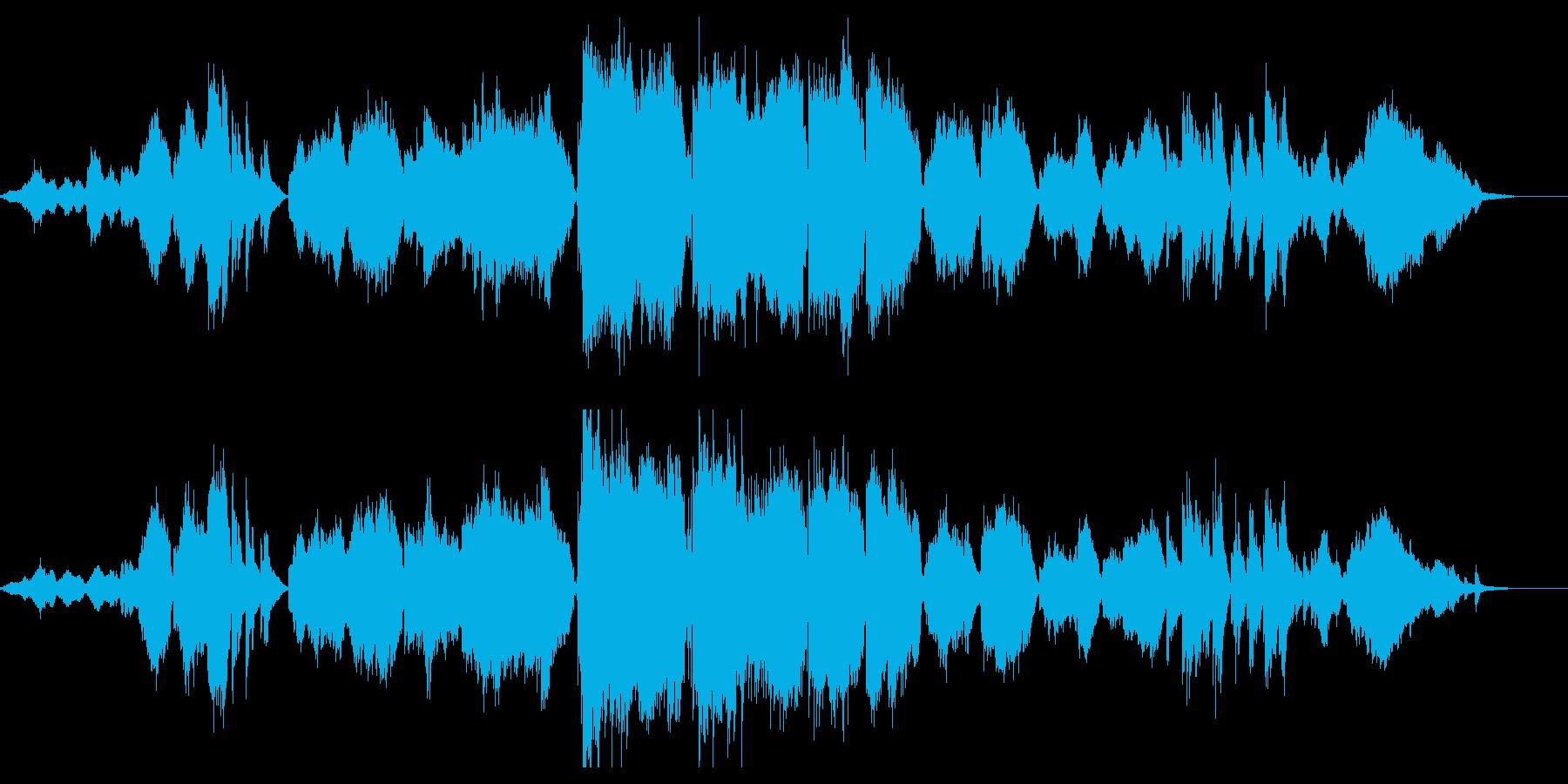 森をイメージしたアンサンブルの再生済みの波形