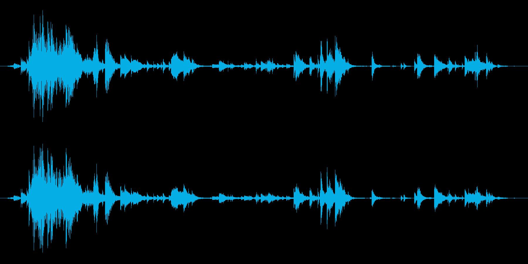 軽鎖:ムーブメントの再生済みの波形