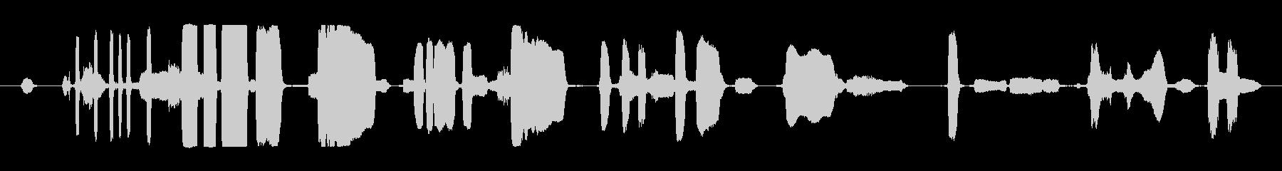 パーティーホーンズグループの未再生の波形