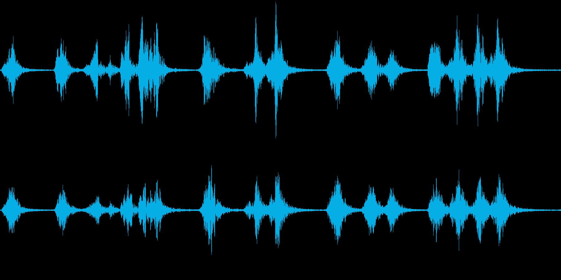サンコウチョウのさえずり(林に棲む鳥)の再生済みの波形