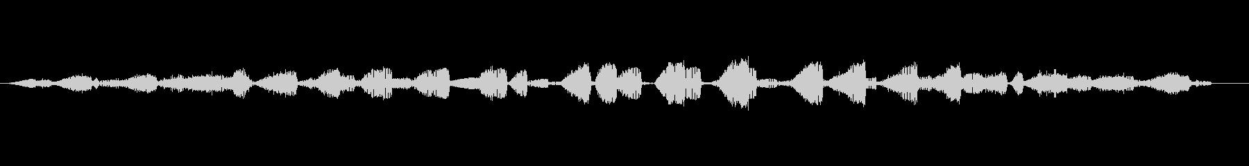 両生類、食用カエルラナエスクレンタ...の未再生の波形