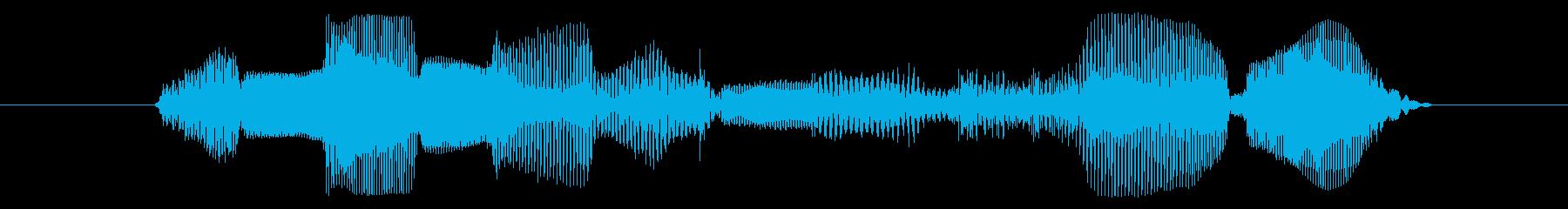 今なら貰える!【②愛嬌/アニメ声】の再生済みの波形