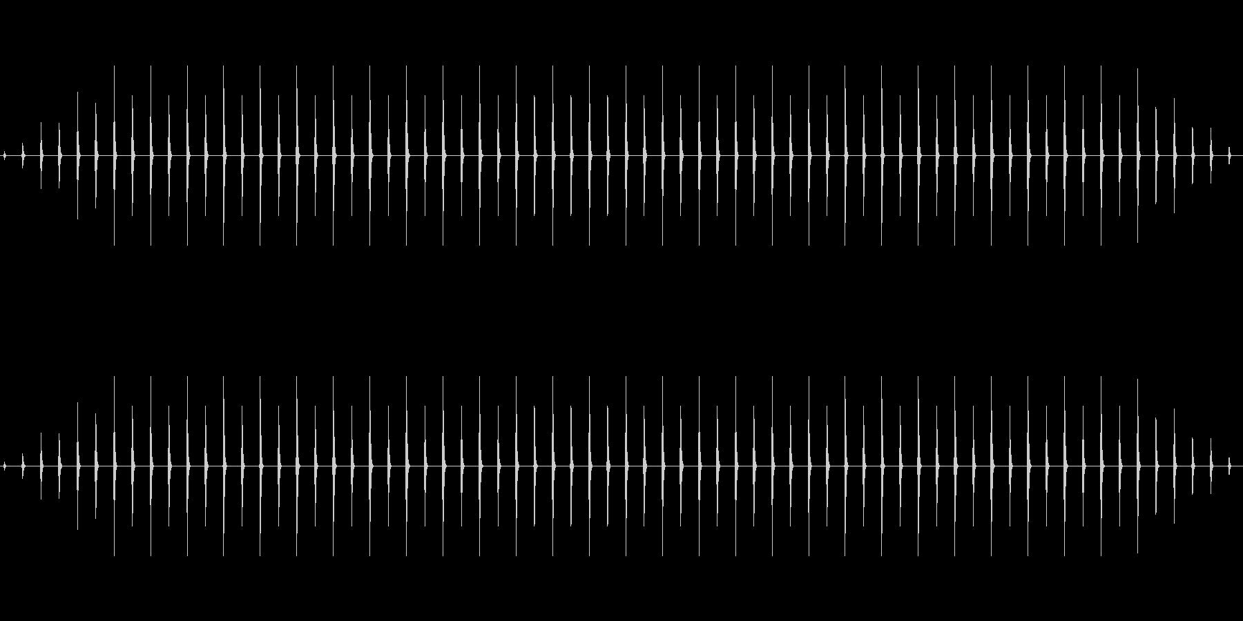 時計 ticktock_31-1_dryの未再生の波形