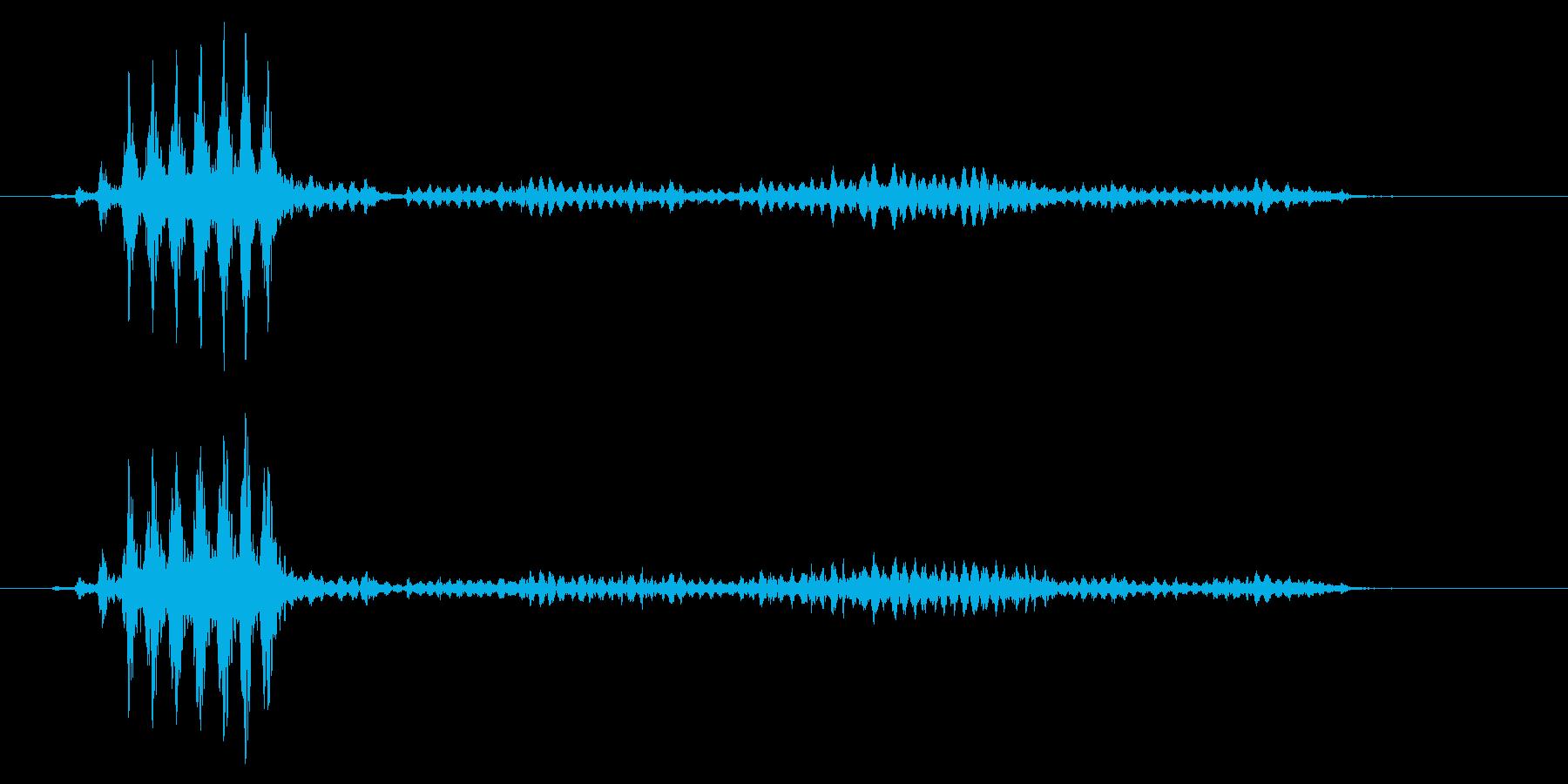 こおろぎの鳴き声_その3の再生済みの波形