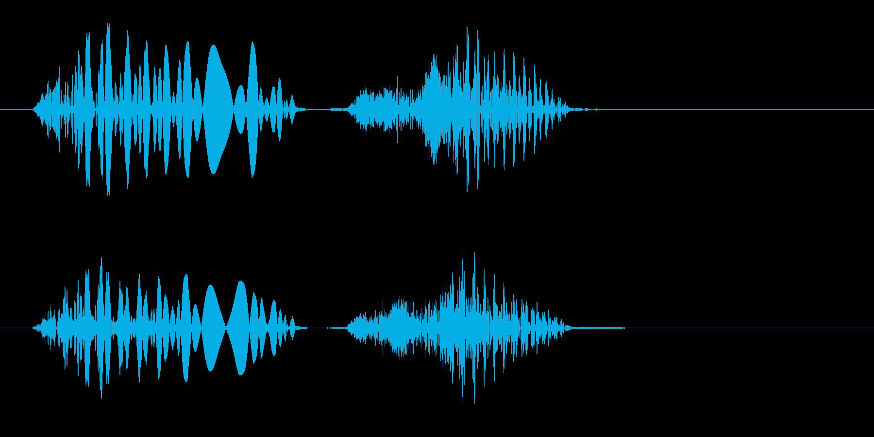 グチョ(何かを踏んだ時や潰れる効果音)の再生済みの波形