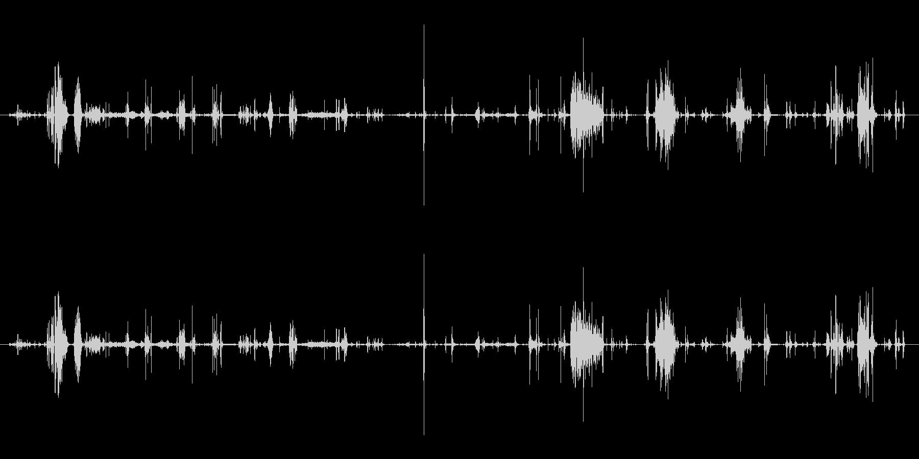 鳴き声 デスバーブルロング03の未再生の波形