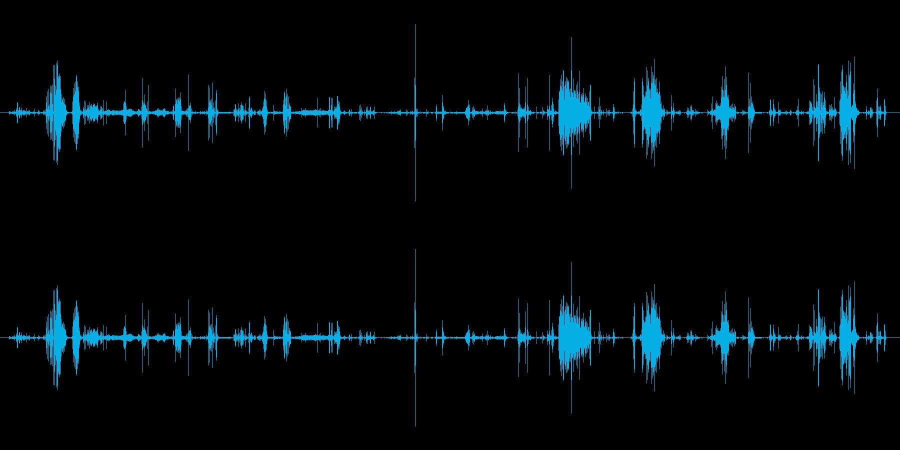 鳴き声 デスバーブルロング03の再生済みの波形