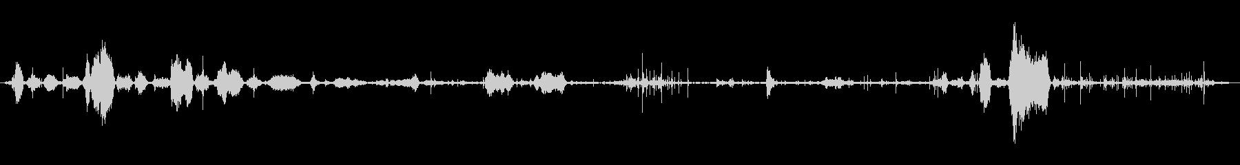 イングリッシュブルドッグ:あえぎと喘鳴の未再生の波形