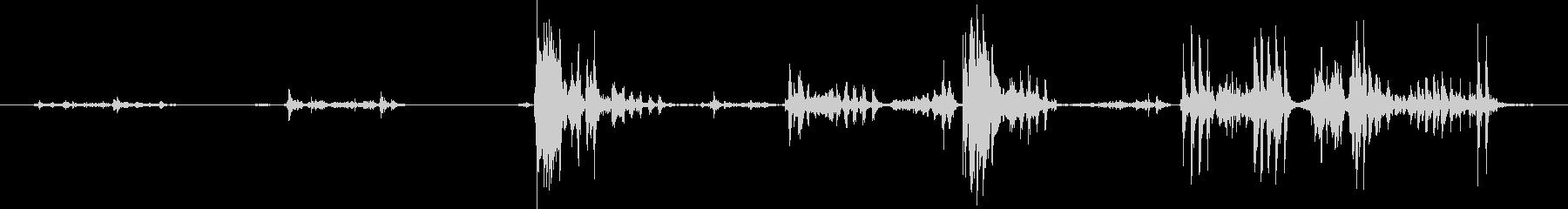ガルルル..グルルル..ライオンの唸り声の未再生の波形