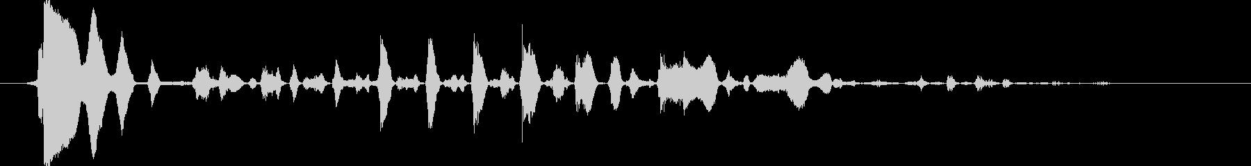 ロバ/ミュールブレイ、Snort。...の未再生の波形