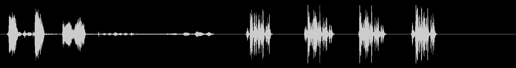 グース-トルコの未再生の波形