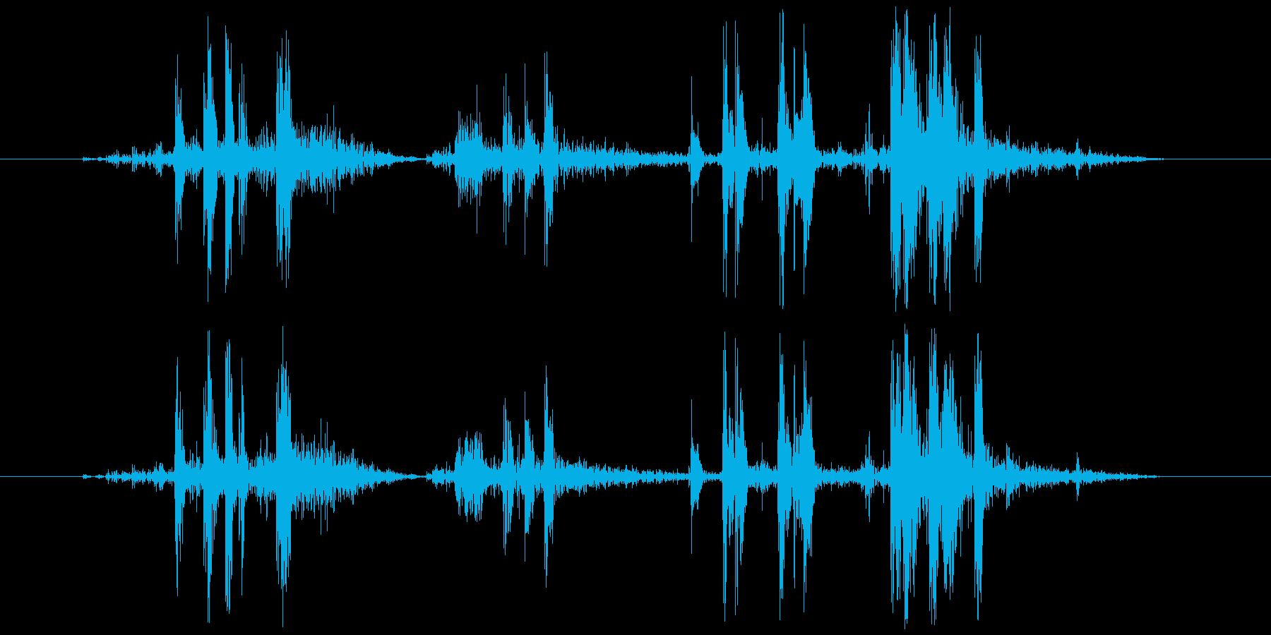 カメラ シャッター音(ノイジー)カッシッの再生済みの波形