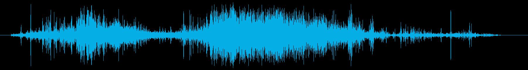 グーシーウォータースクイッシュ、フォリーの再生済みの波形