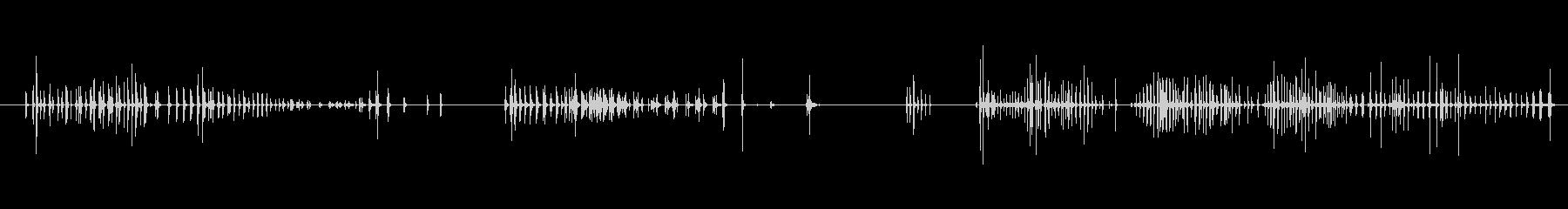 小さい Quack Long 01の未再生の波形