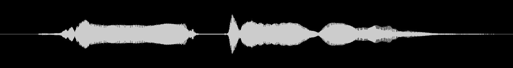 鳴き声 興奮女性03 03湖の未再生の波形