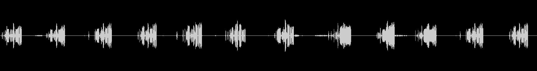 ビウィックスレン:歌う、動物の鳥の未再生の波形