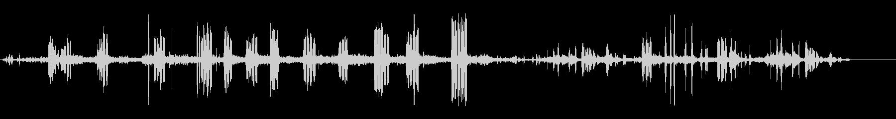 マレレンガの未再生の波形