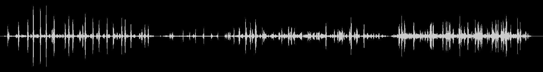 スズメ-パルダルコムの未再生の波形