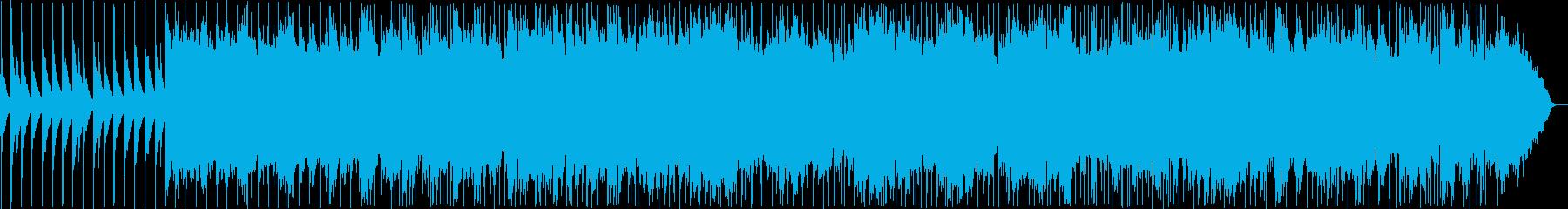 Tingusannu flower / Okinawa folk song's reproduced waveform