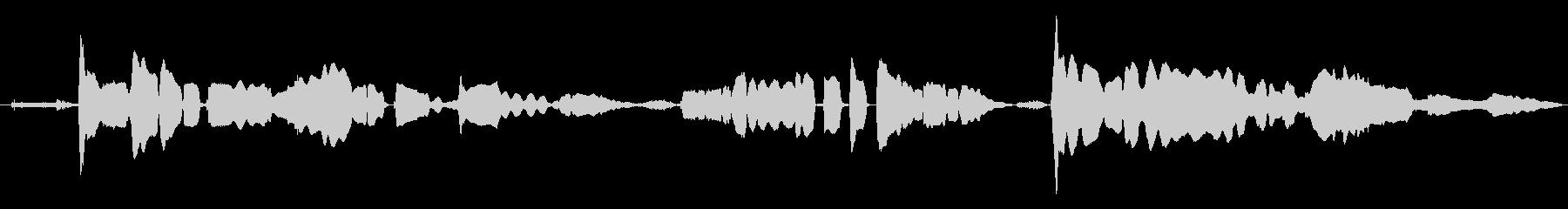 鳴き声 女性歌うジャズインプロ01の未再生の波形