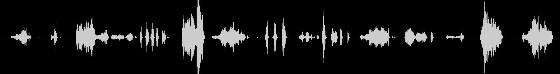 口の音、タイプ:ドナルドダック、人...の未再生の波形