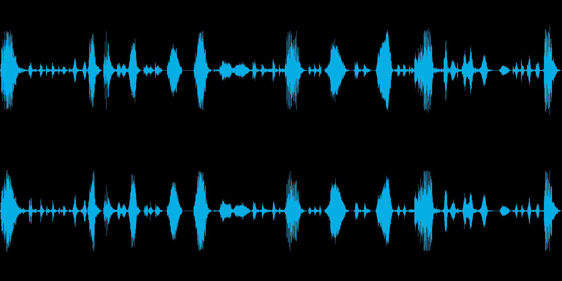 イノシシが鼻をフンフンの再生済みの波形