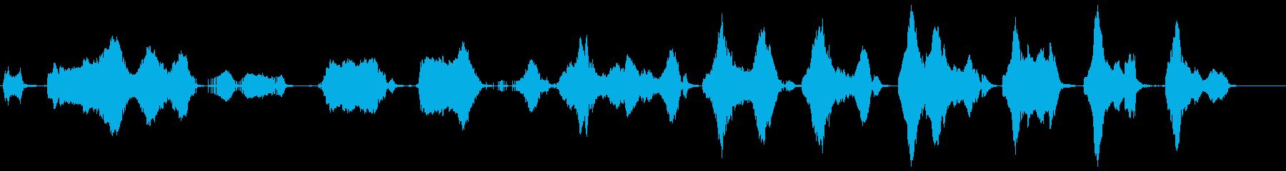 赤ちゃんの泣き言の再生済みの波形