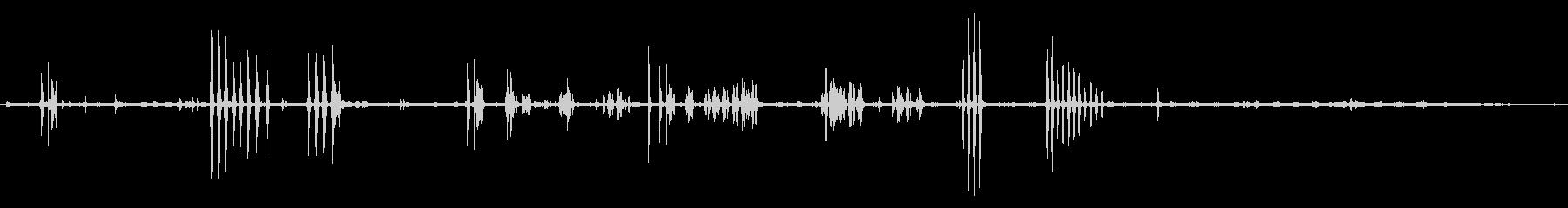 環境音 アフリカのブッシュ朝の鳥02の未再生の波形
