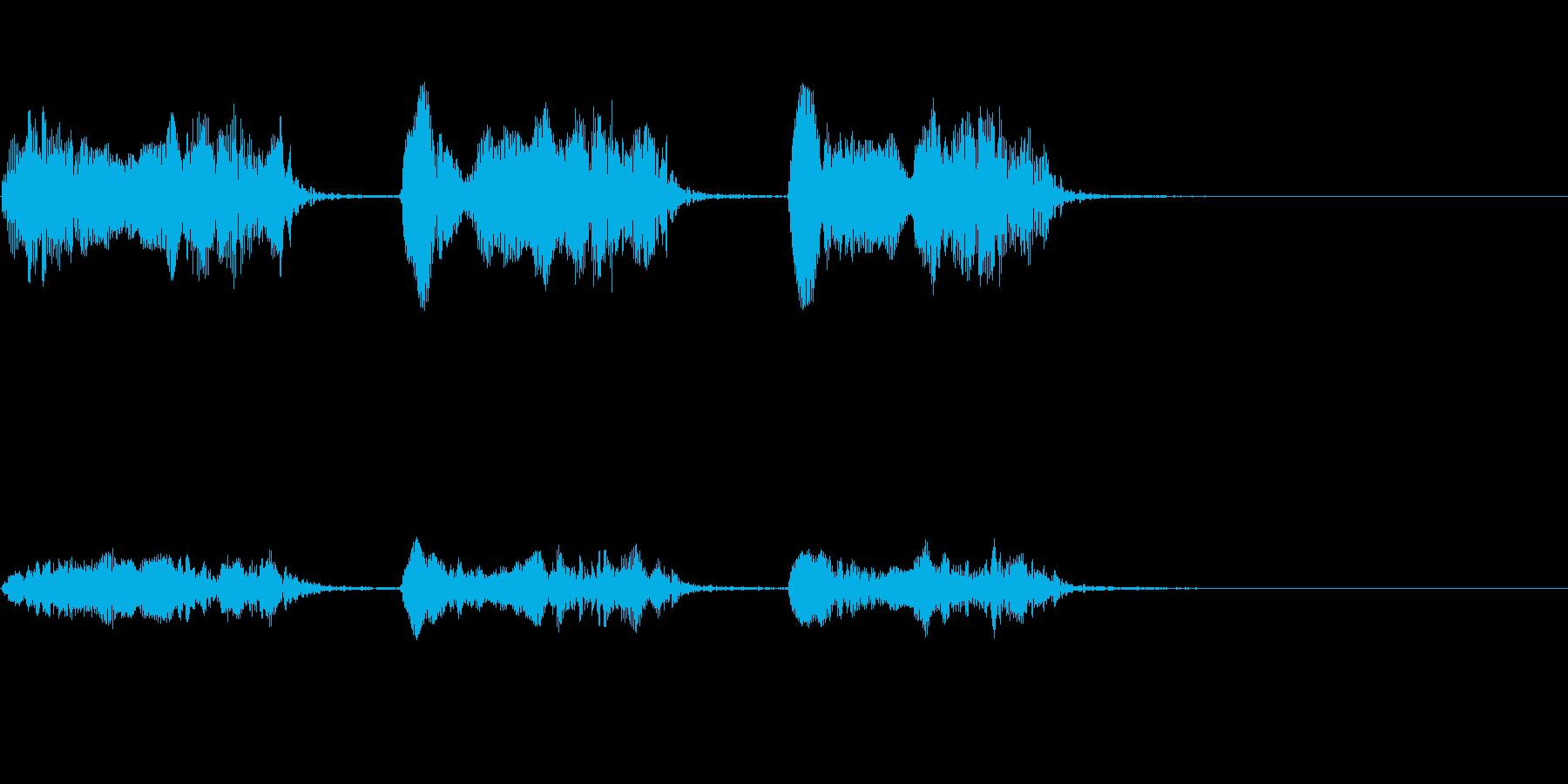 【生録音】カラスの鳴く音2 カーカーカーの再生済みの波形
