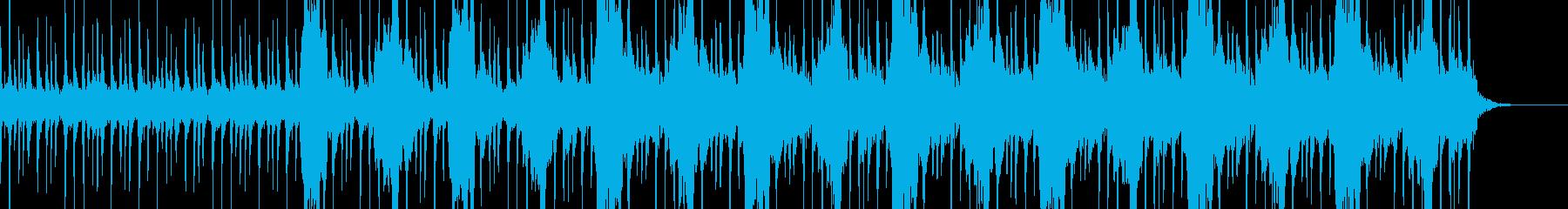 ジャングルをイメージした不思議な民族音楽の再生済みの波形