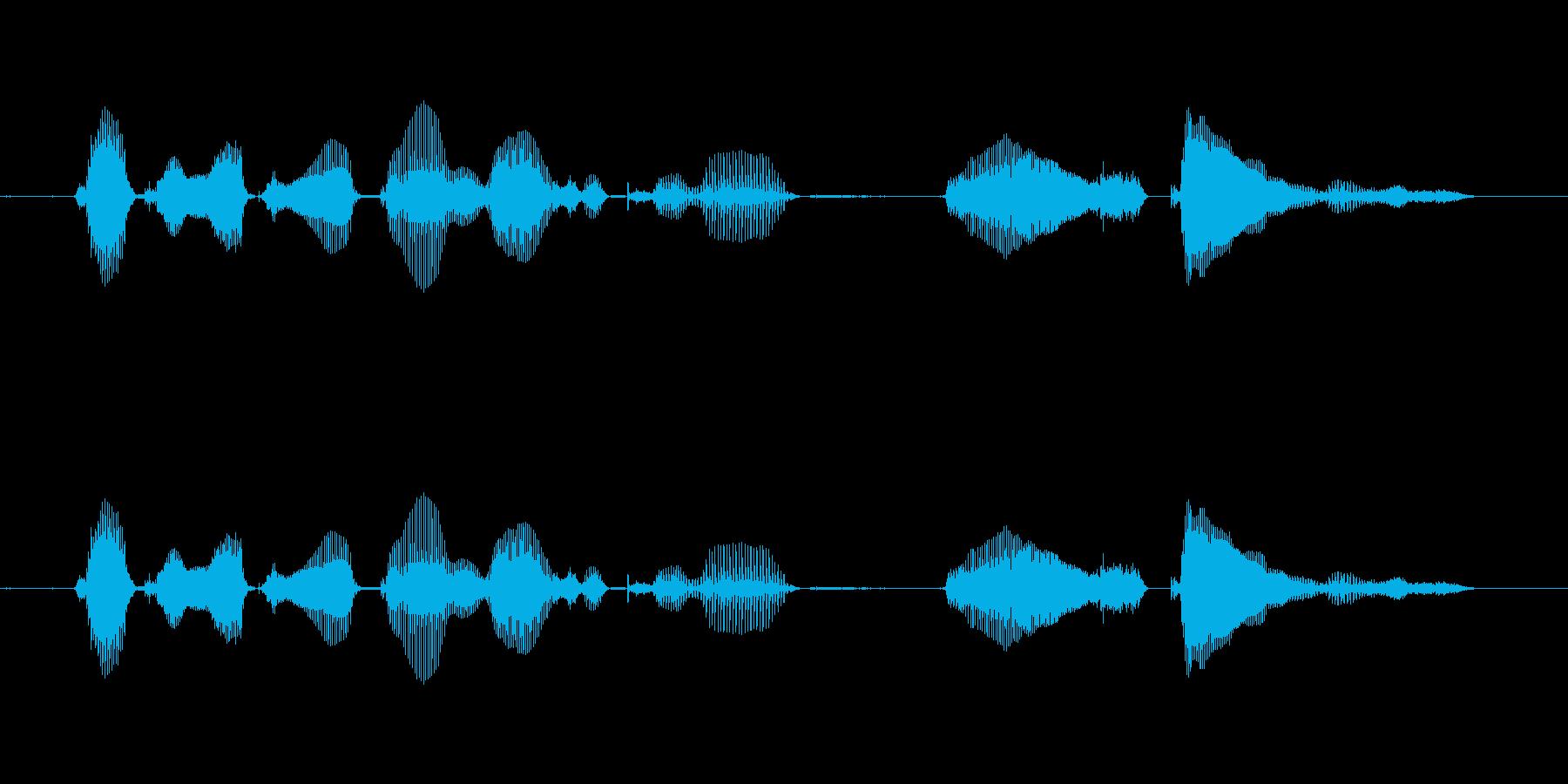 【誕生石】6月の誕生石は、ムーンストーンの再生済みの波形