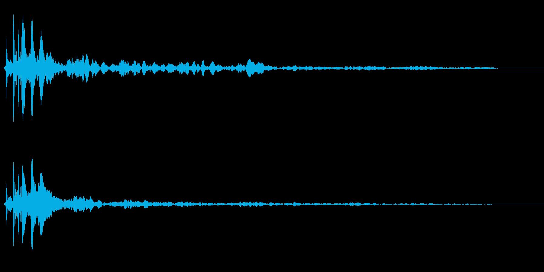 カリン(何かがはじけるような音)の再生済みの波形