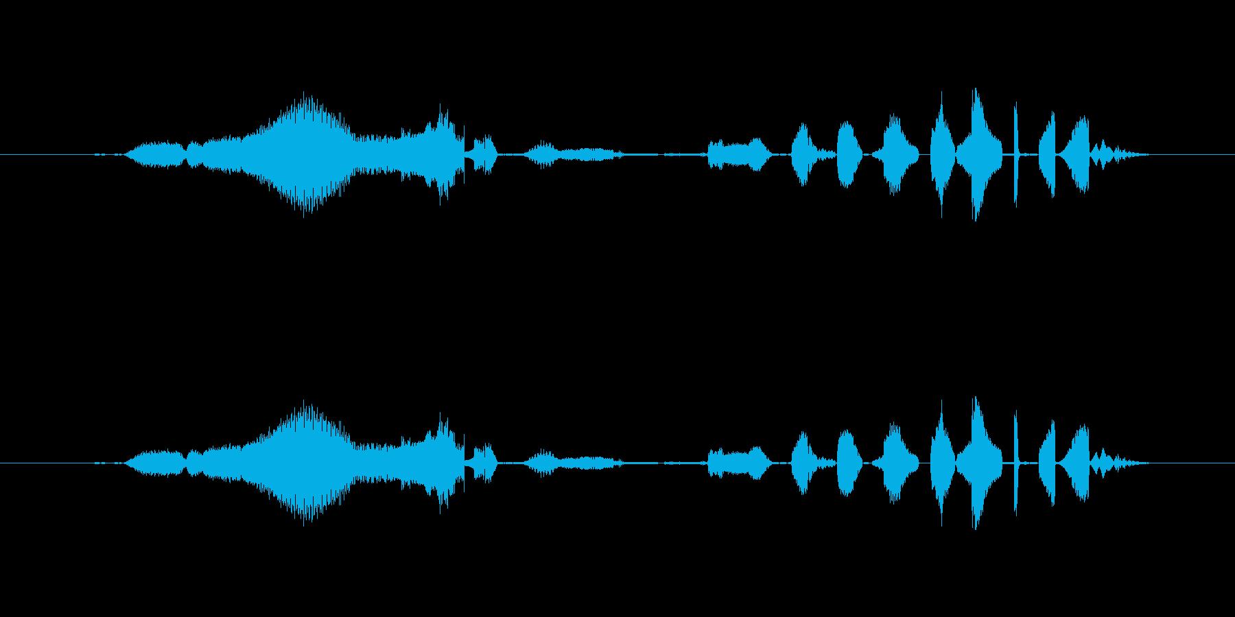 特撮 クレイジー01を確認の再生済みの波形