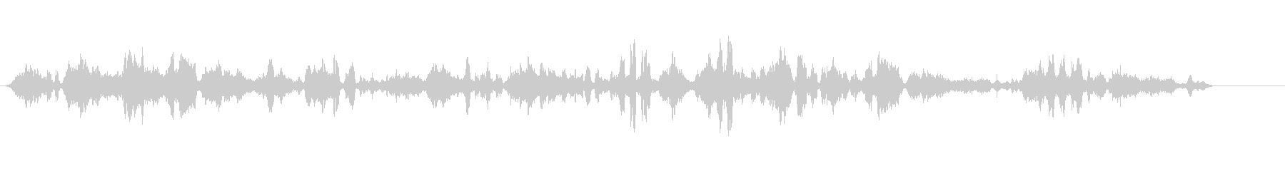 ギレモット-URIA AALGE-の未再生の波形