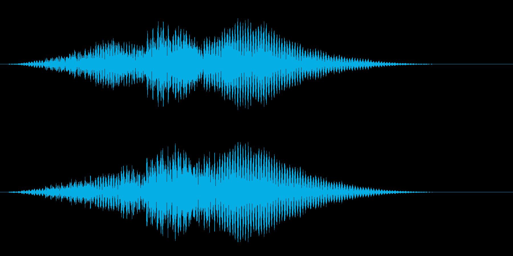 機械的な「ふぉん」【浮く、スタート音】の再生済みの波形