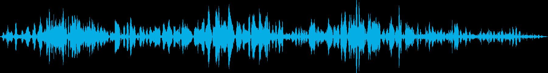 白鳥が鳴く音を収録したものです。の再生済みの波形