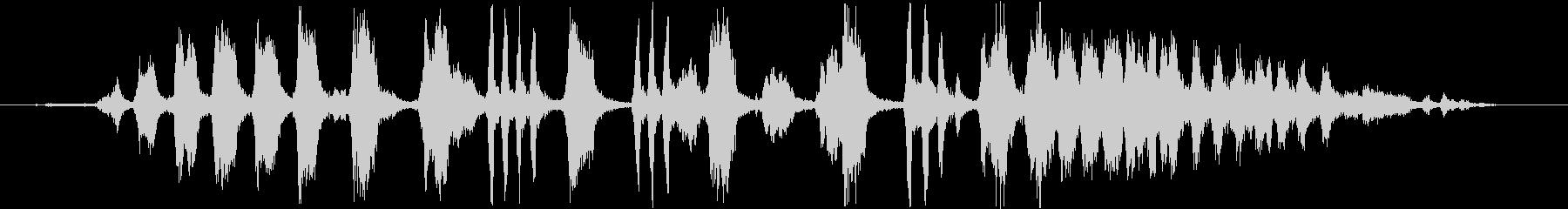 白い正面オウム:大声で呼び出して飛...の未再生の波形