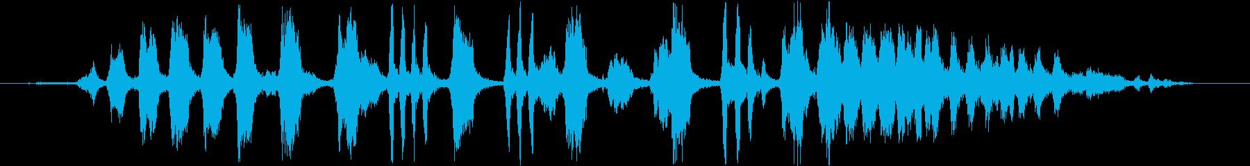 白い正面オウム:大声で呼び出して飛...の再生済みの波形