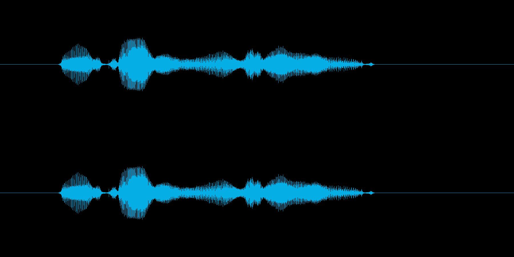 【西暦】2020年の再生済みの波形