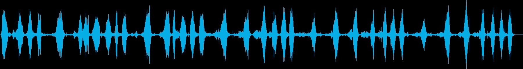 クジラ、ザトウクジラの鳴き声、歌。...の再生済みの波形