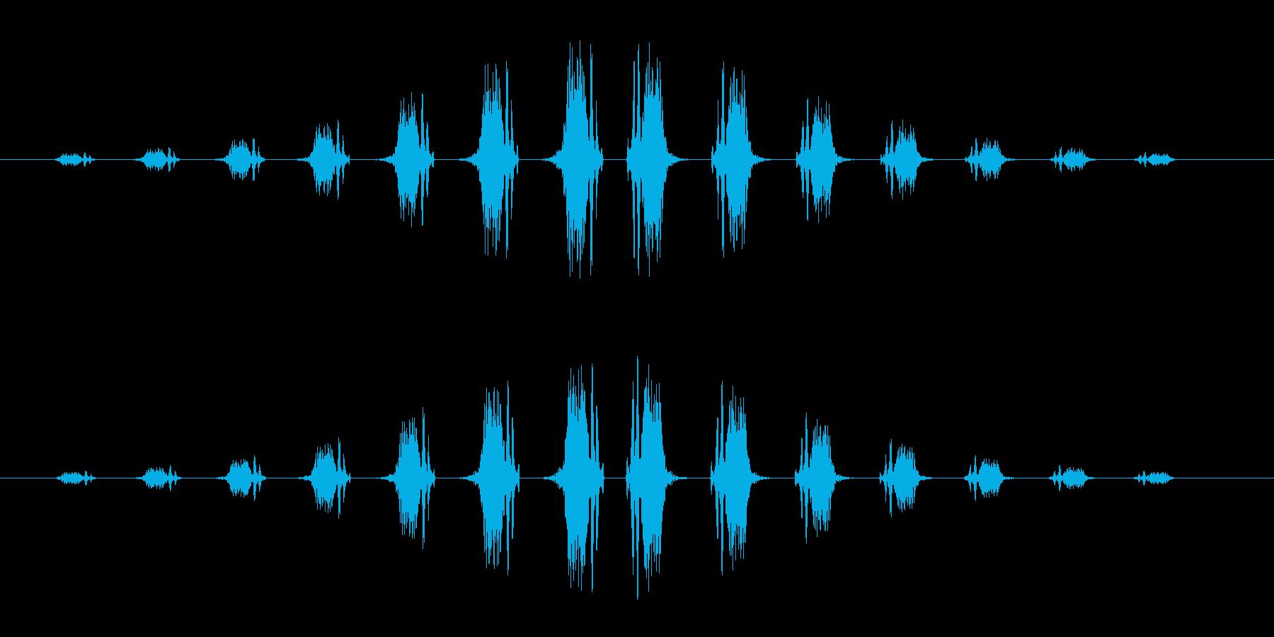 シュワワン(通過音)の再生済みの波形