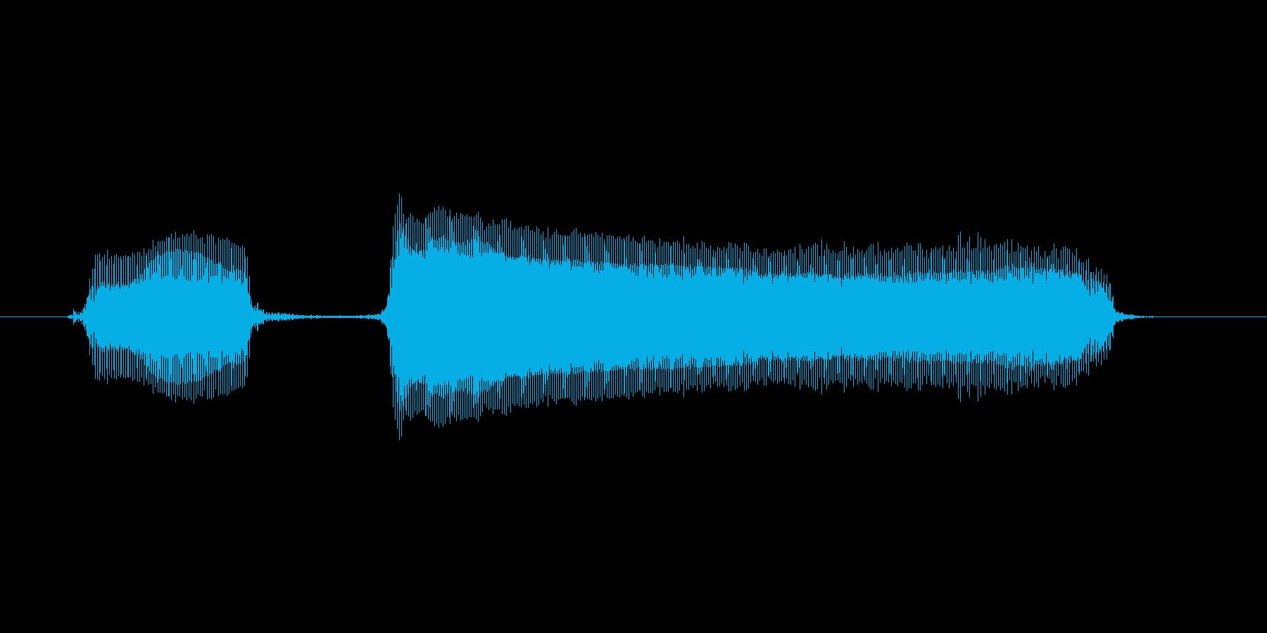 ブッブーの再生済みの波形