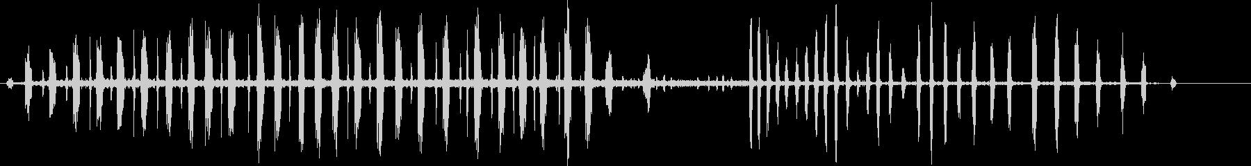 ヤマネの未再生の波形