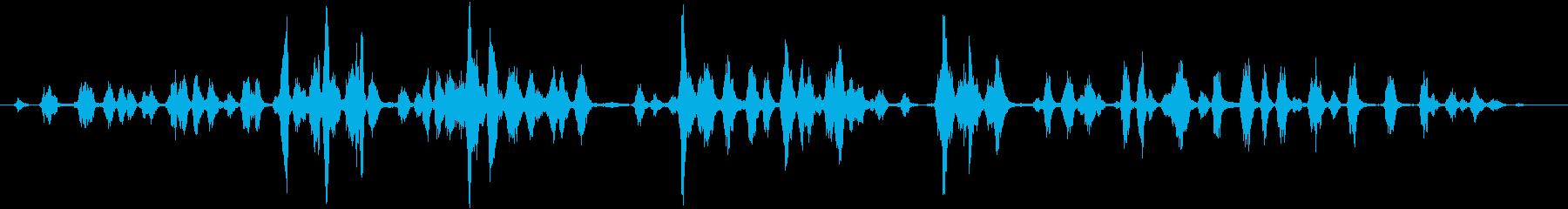アウトドアドッグケンネル:ドッグバ...の再生済みの波形