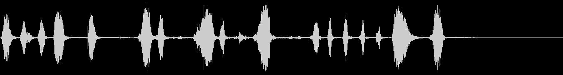 アコーデオン:クレイジーアクセント...の未再生の波形