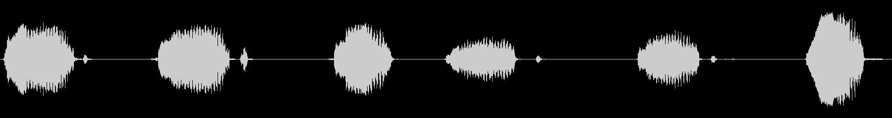いくつかの孤立したウィニーの未再生の波形