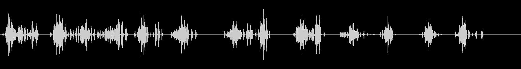 ガチョウ-アウトドア-の未再生の波形