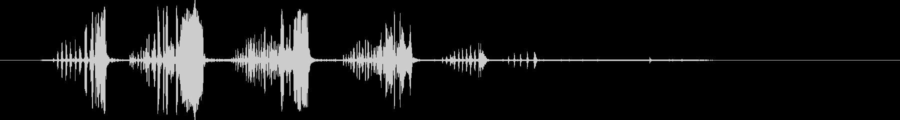 ペンギンの鳴き声。ウォーブリングペ...の未再生の波形