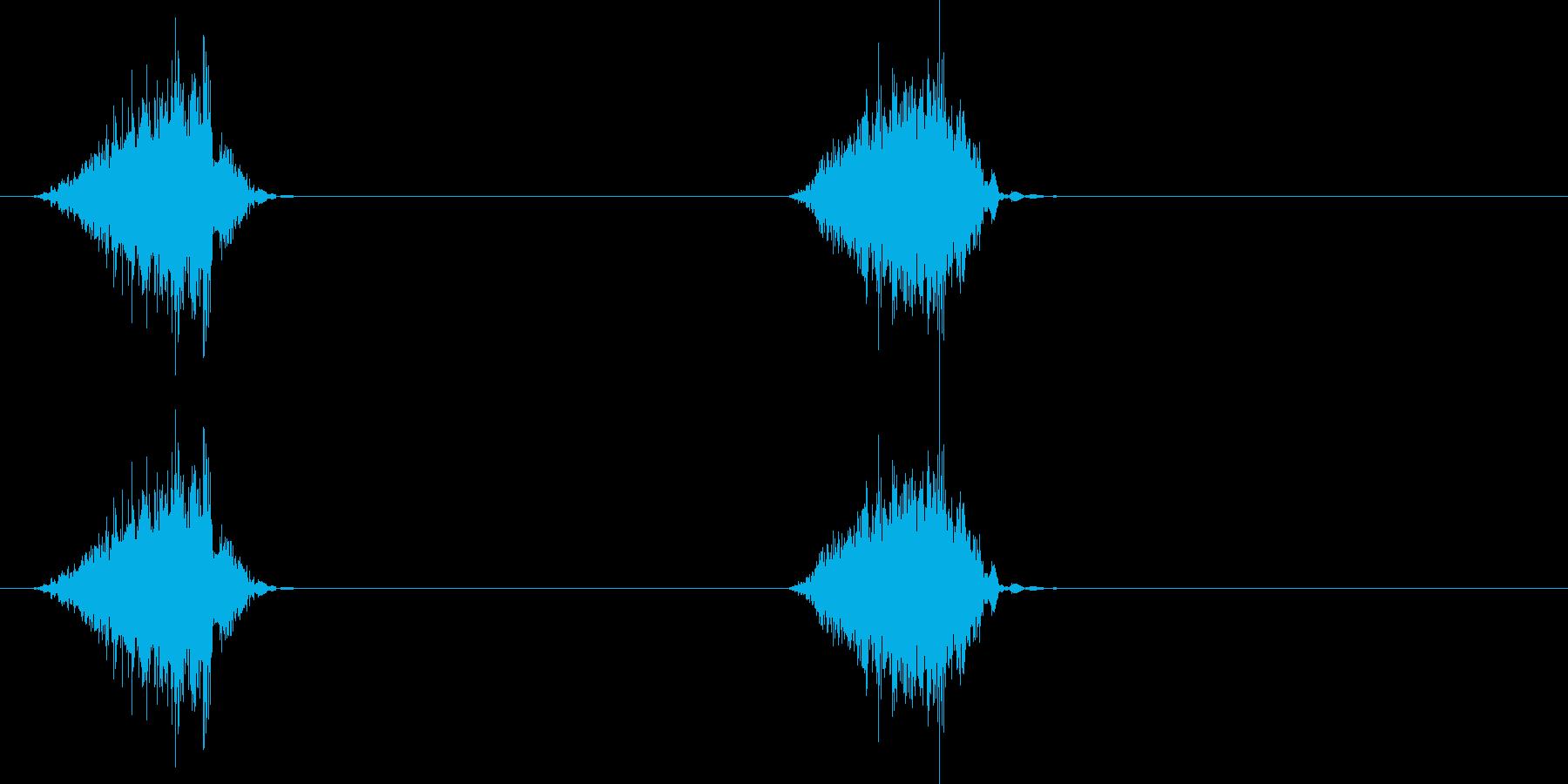 ジャリ、ジャリ(砂を踏んだ音)の再生済みの波形
